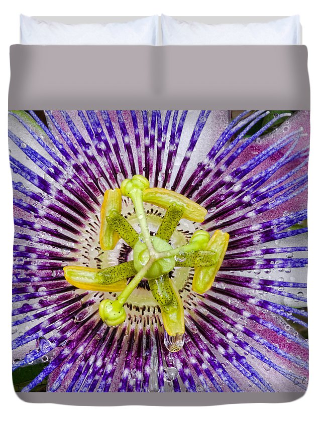 Passion Duvet Cover featuring the photograph Purple Radial by Christopher Holmes