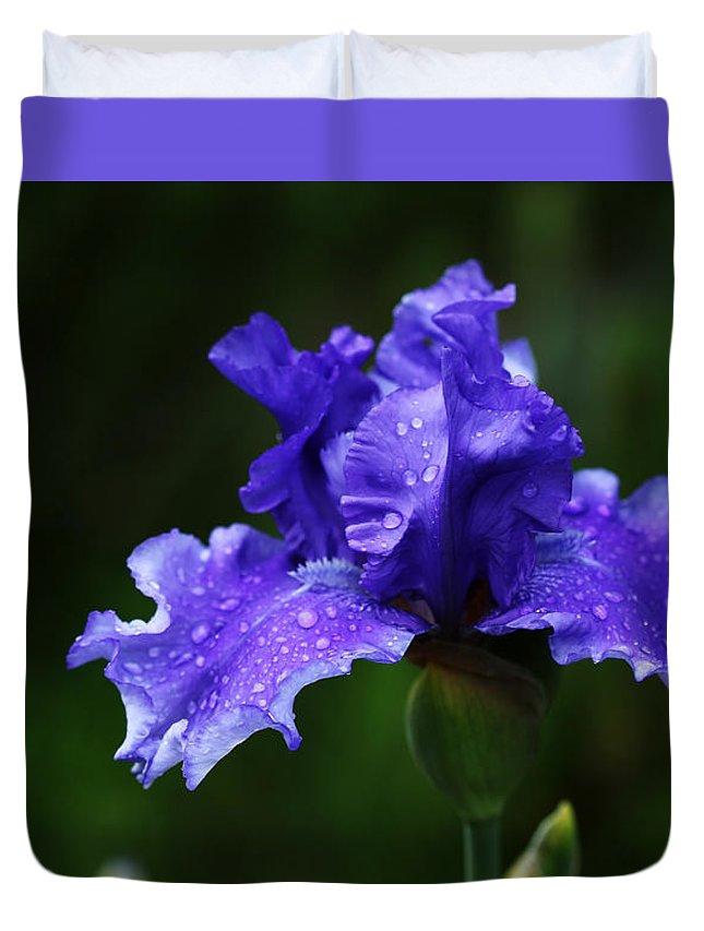 Iris Duvet Cover featuring the photograph Purple Rain by Debbie Oppermann