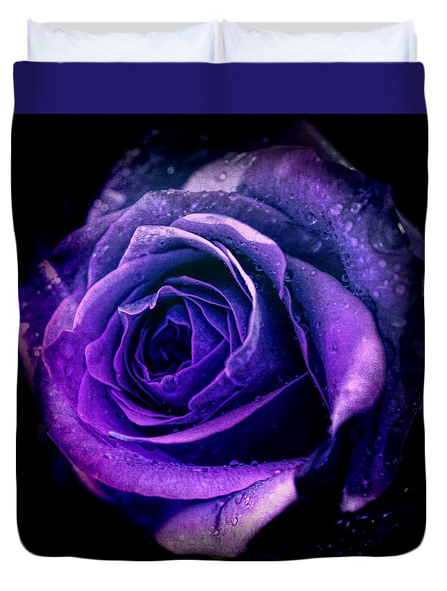 Rose Duvet Cover featuring the photograph Purple Role by Lilia D
