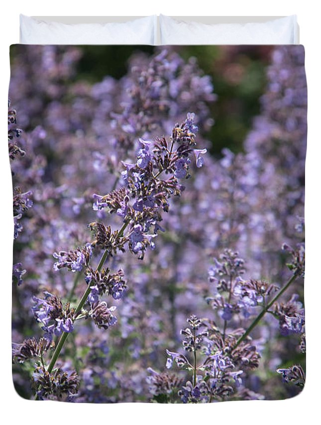 Visual Emotional Impressions Stronger Accurate Representation. Impressions Experience Feelings Essence Encounter. Duvet Cover featuring the photograph Purple Spikes Flora Impression 6.8.17 by Michael DeSiano