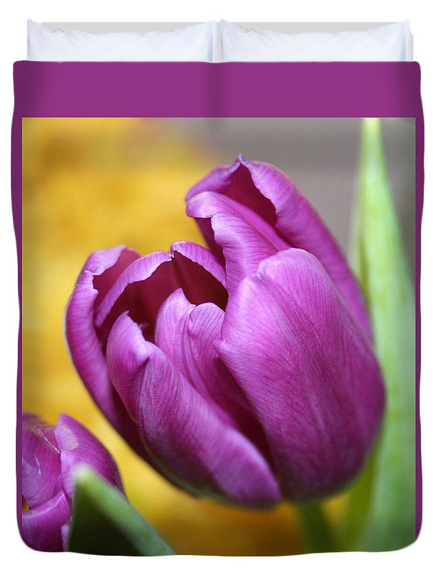 Flowers Nature Duvet Cover featuring the photograph Purple Spring by Linda Sannuti