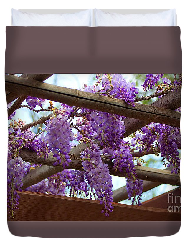 Blossoming Duvet Cover featuring the photograph Purple Trellis by Marta Robin Gaughen