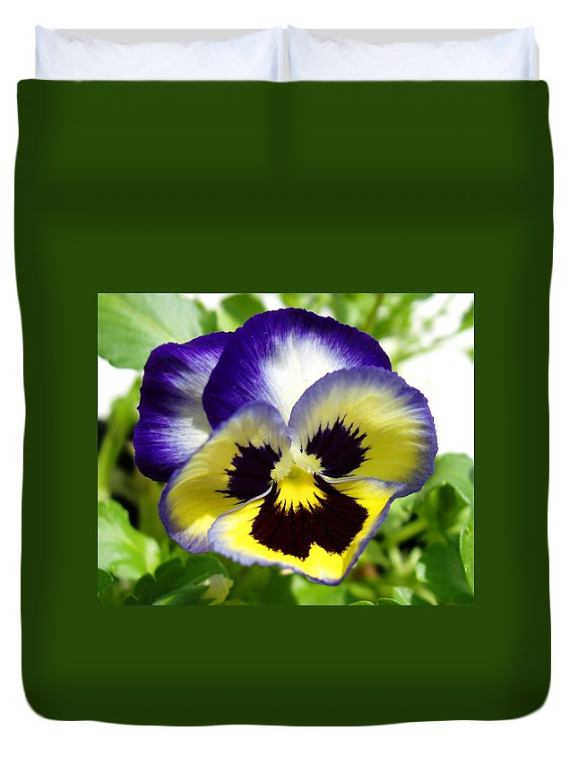 Pansy Duvet Cover featuring the photograph Purple White And Yellow Pansy by Nancy Mueller