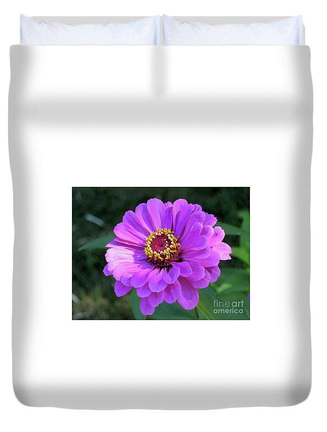 Zinnia Duvet Cover featuring the photograph Purple Zinnia by Elizabeth Duggan