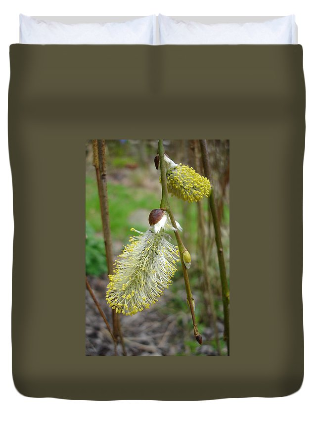 Flora Duvet Cover featuring the photograph Pussy Willow by Susan Baker
