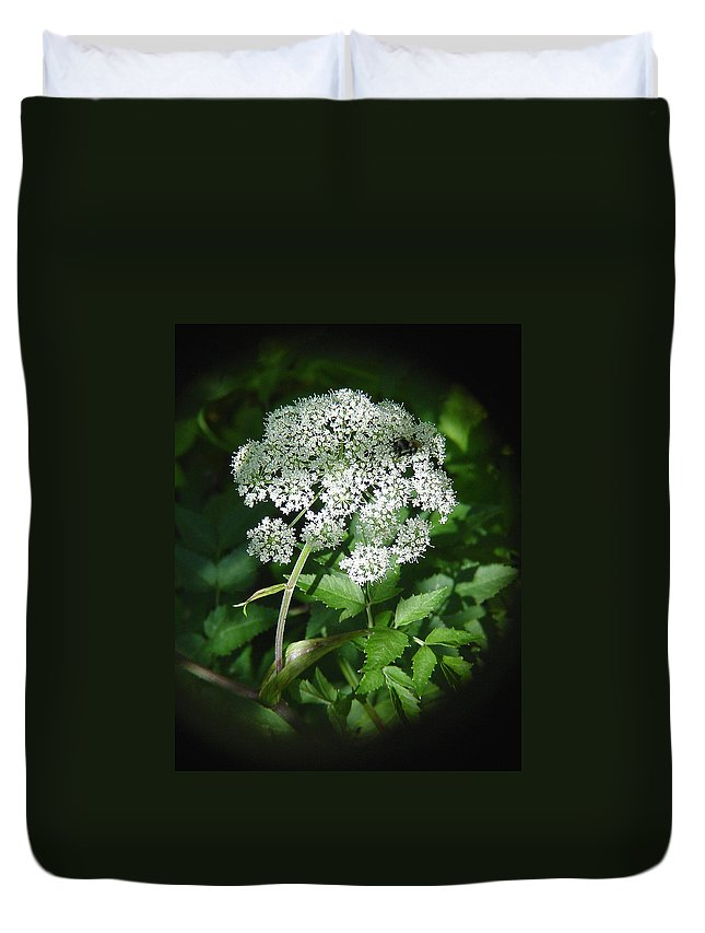 Forest Duvet Cover featuring the photograph Queen Ann Lace by Shirley Heyn
