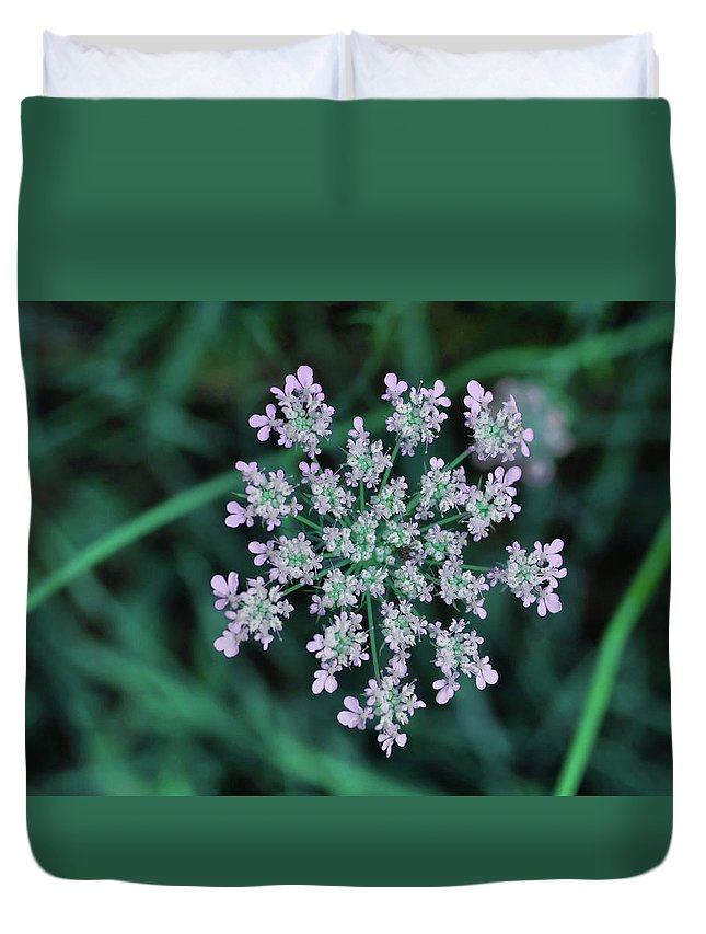 Flower Duvet Cover featuring the photograph Queen Anne by JAMART Photography