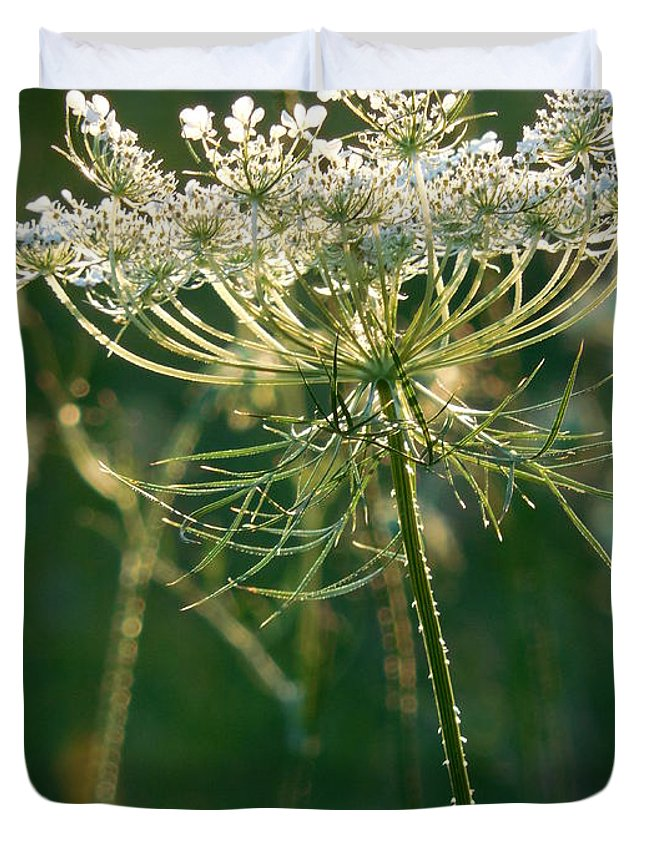 Queen Anne's Lace Duvet Cover featuring the photograph Queen Anne's Lace In Green Vertical by Rowena Throckmorton