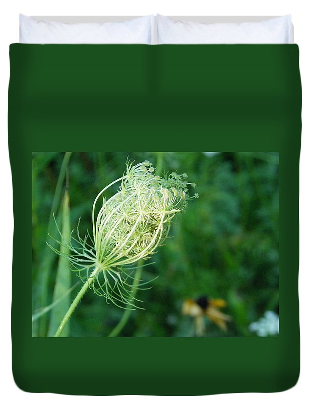 Nature Duvet Cover featuring the photograph Queen Anne's Lace by Peggy King