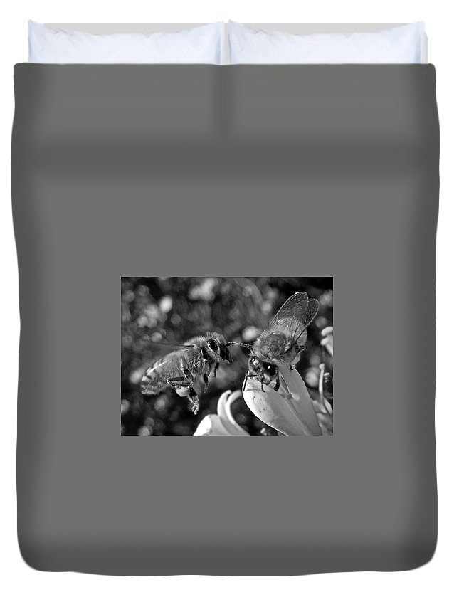 Animals Duvet Cover featuring the photograph Queen Is Calling by Dale Chapel