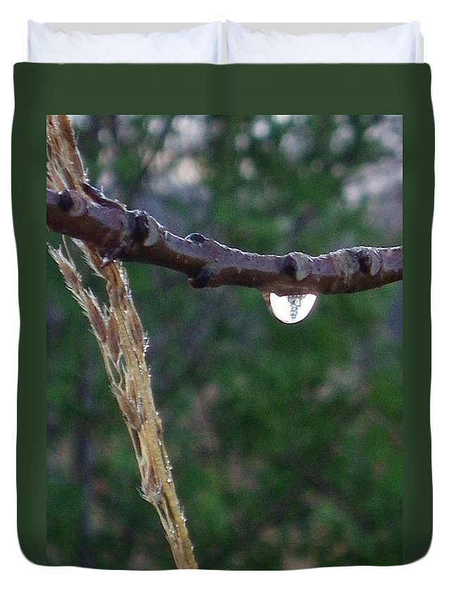 Nature Duvet Cover featuring the photograph Quiet Reflection by Peggy King