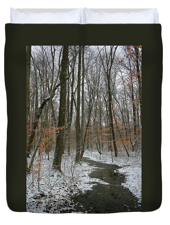 Forest Woods Water Winter Tree Snow Cold Season Nature Duvet Cover featuring the photograph Quite Path by Andrei Shliakhau