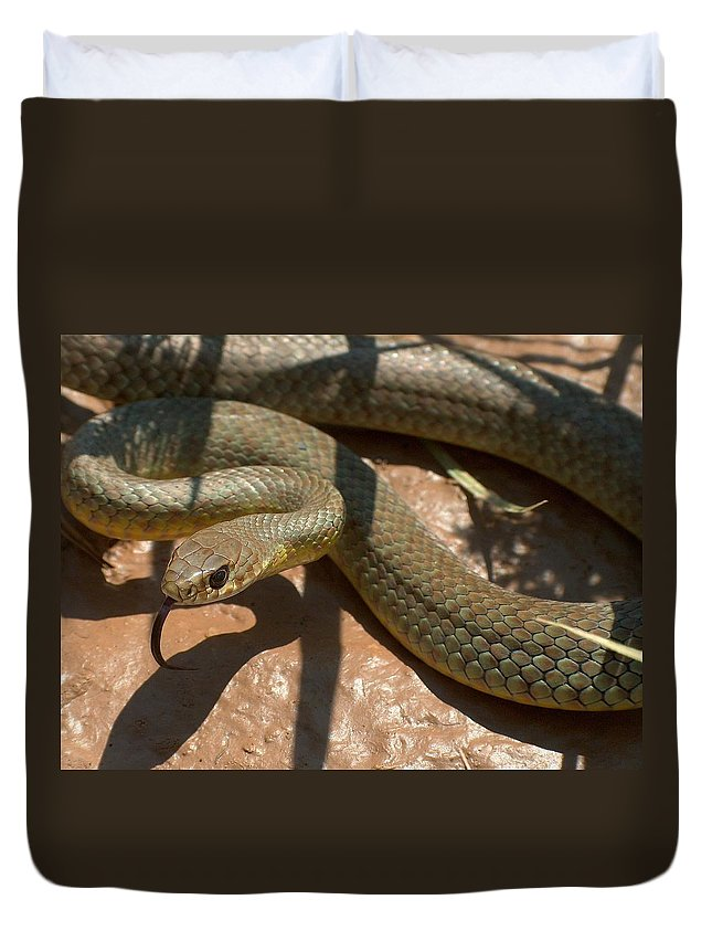 Green Racer Duvet Cover featuring the photograph Racer On The Rio Grande by Tim McCarthy