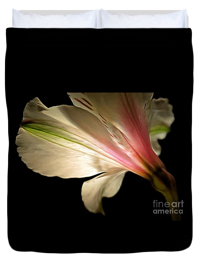 Amaryllis Duvet Cover featuring the photograph Radiance Of Hope by Krissy Katsimbras