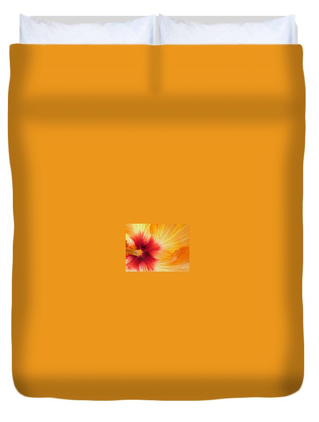 Hibiscus Duvet Cover featuring the photograph Radiant by Racquel Morgan