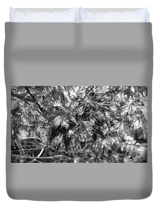 Black And White Duvet Cover featuring the photograph Rain On The Leaf by Douglas Craig