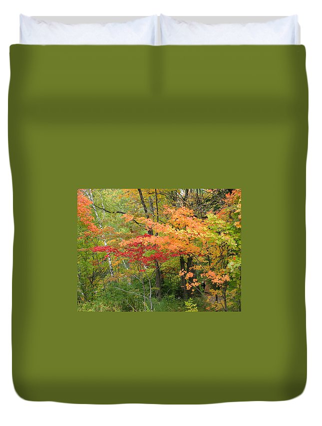 Fall Duvet Cover featuring the photograph Rainbow by Kelly Mezzapelle