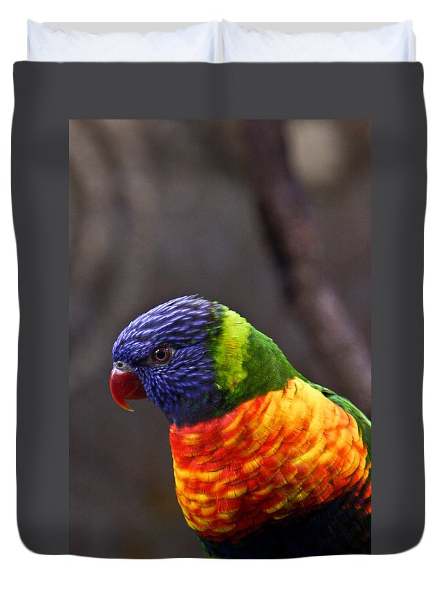 Bird Colorful Duvet Cover featuring the photograph Rainbow Lorikeet by Douglas Barnett