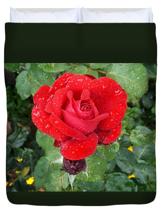 Rose Duvet Cover featuring the photograph Raindrop Rose by Ellen Ashworth