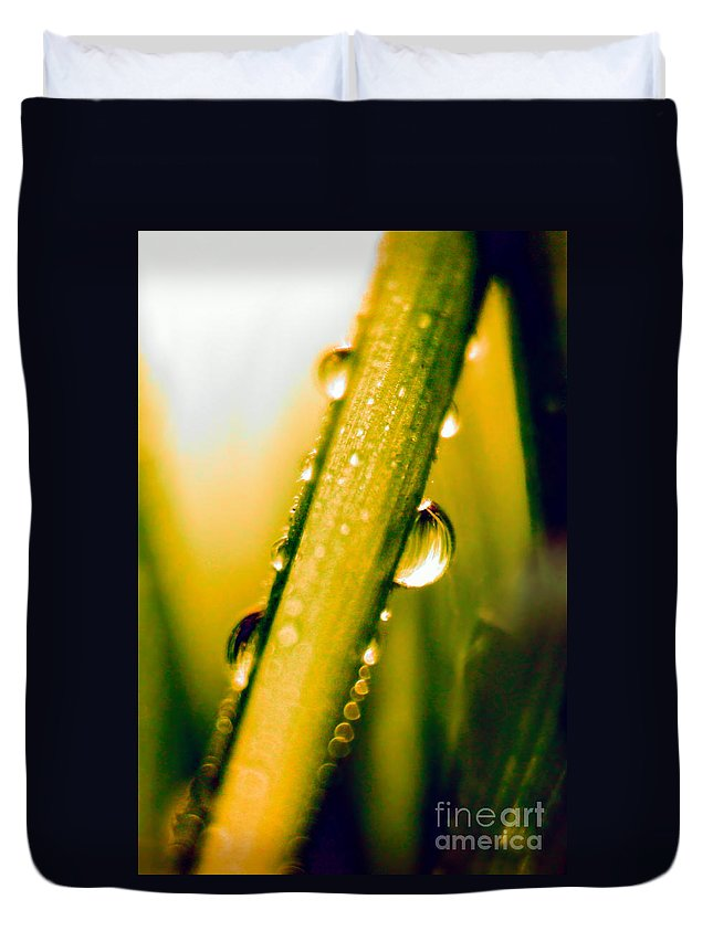 Raindrops On A Blade Of Grass Duvet Cover featuring the photograph Raindrops On A Blade Of Grass by Mariola Bitner