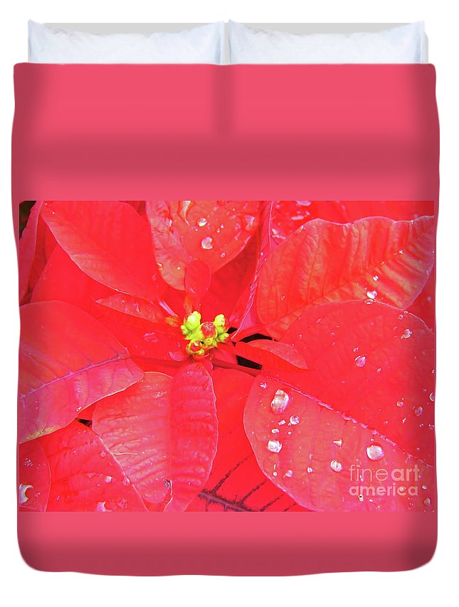 Poinsettia Duvet Cover featuring the photograph Raindrops On Red by D Hackett