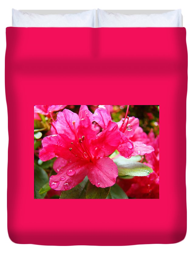 Azalea Duvet Cover featuring the photograph Raindrops Red Azaleas Art Prints Water Drops Azalea Flowers by Baslee Troutman