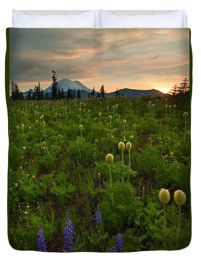 Meadow Duvet Cover featuring the photograph Rainier Wildflower Light by Mike Dawson