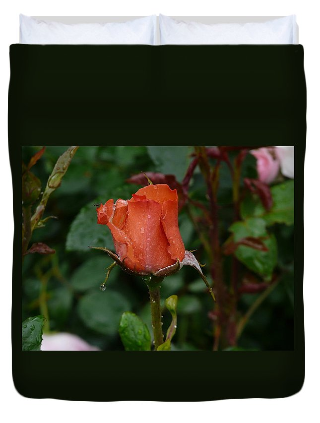 Flower Duvet Cover featuring the photograph Rainy Rose Bud by Valerie Ornstein