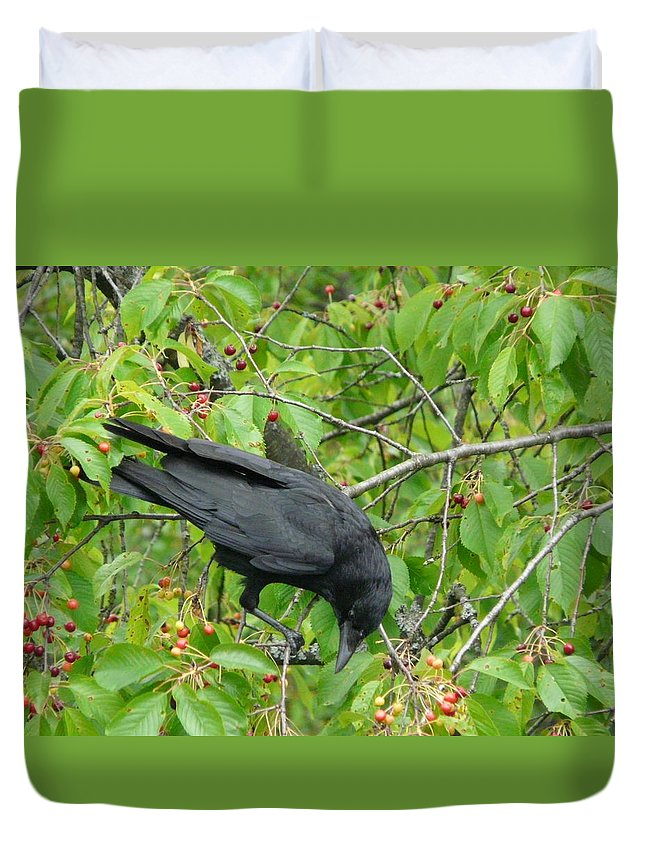Bird Duvet Cover featuring the photograph Raven In The Cherry Tree by Valerie Ornstein