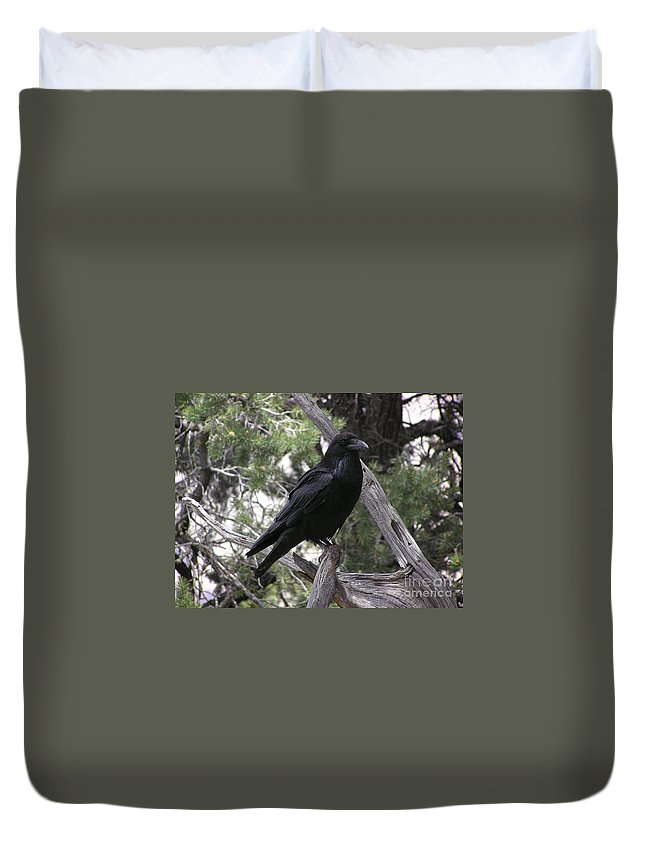 Raven Duvet Cover featuring the photograph Raven by Louise Magno
