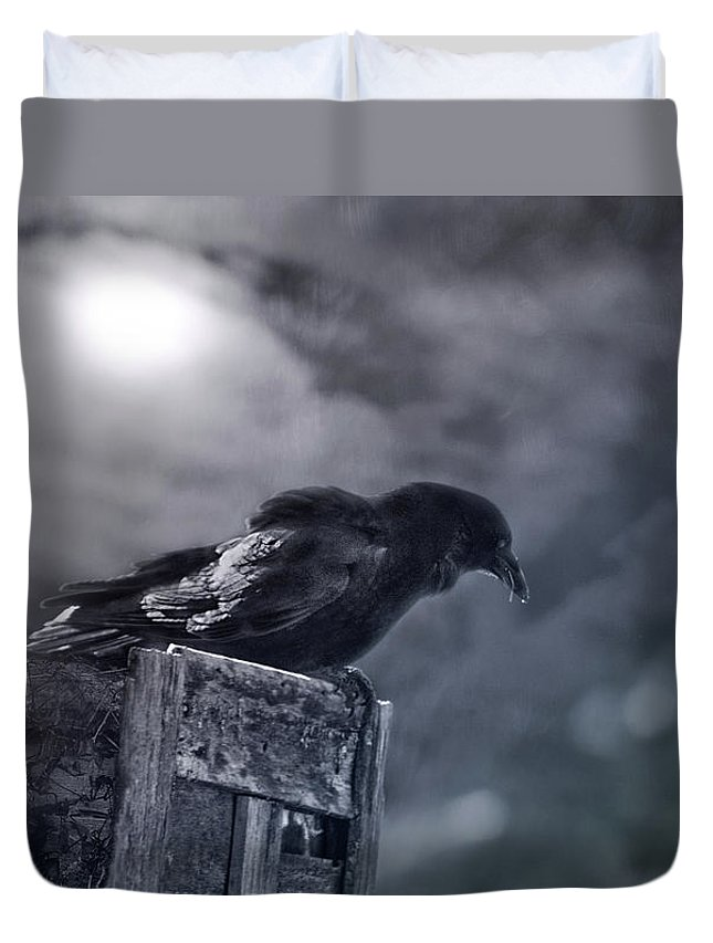 Raven Duvet Cover featuring the photograph Raven Twilight by Susan Capuano