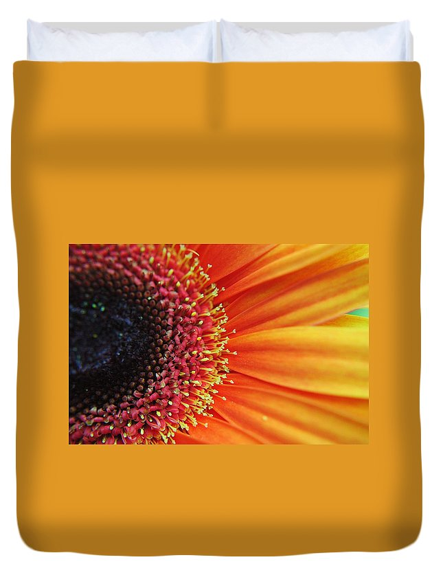 Floral Duvet Cover featuring the photograph Ray Of Sunshine by Frozen in Time Fine Art Photography