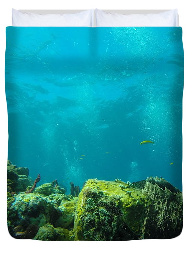 Scuba Diving Duvet Cover featuring the photograph Rays Of Light by Angela Niesz