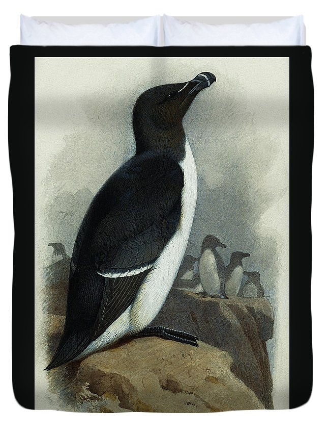 Razorbill Duvet Covers