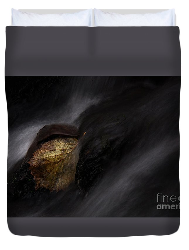 Leaf Duvet Cover featuring the photograph Re Leaf by Rikard Strand