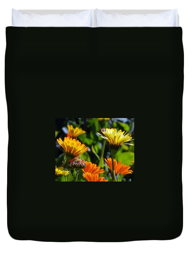 Flower Duvet Cover featuring the photograph Reach For The Sun 1 by Amy Fose