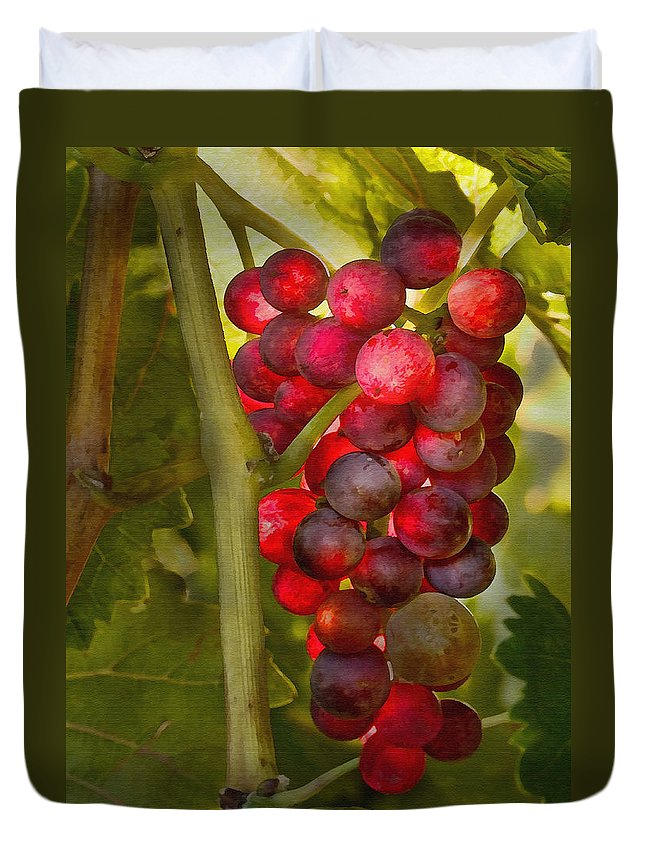 Grape Duvet Cover featuring the photograph Ready For Harvest by Sharon Foster
