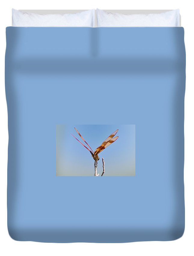 Dragonfly Duvet Cover featuring the photograph Ready For Take Off by Bill Cannon