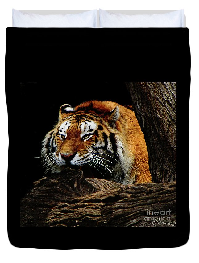 Tiger Duvet Cover featuring the photograph Ready Or Not by September Stone