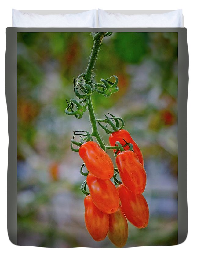 Tomatoes Duvet Cover featuring the photograph Ready To Eat by Linda Unger