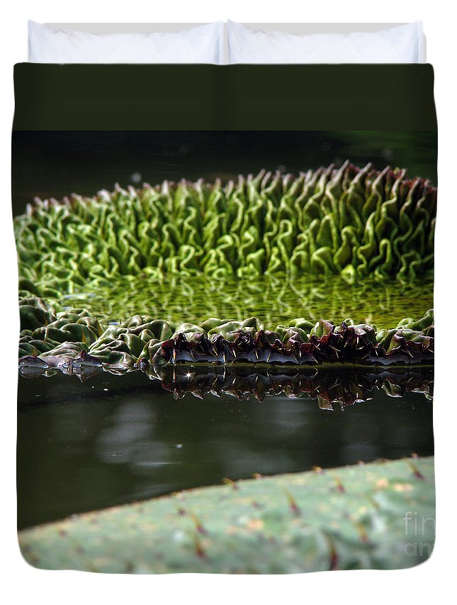 Lillypad Duvet Cover featuring the photograph Ready To Spread by Amanda Barcon
