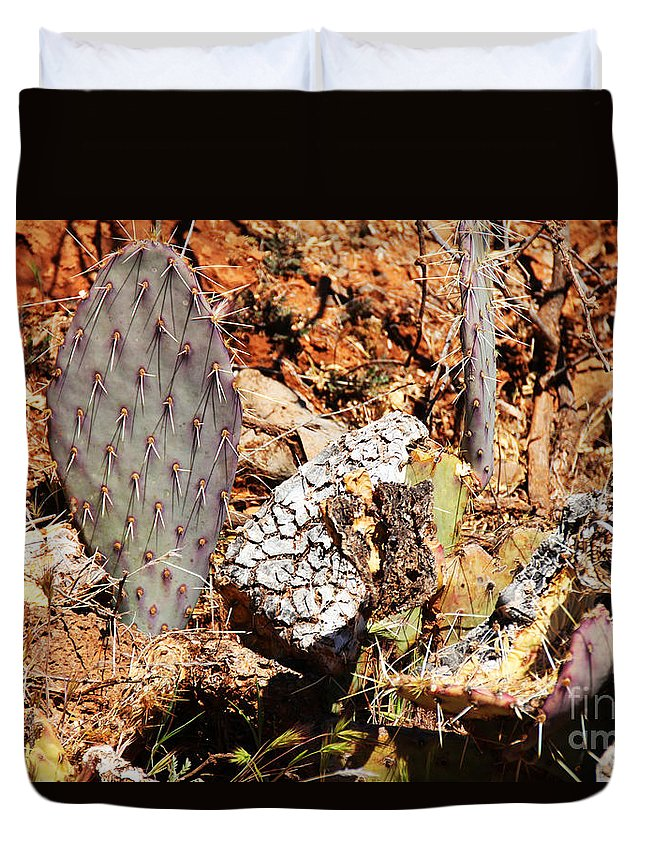 Real Duvet Cover featuring the photograph Real Cactus In An Actual Desert by David Frederick