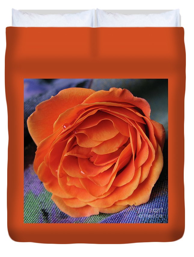 Rose Duvet Cover featuring the photograph Really Orange Rose by Ann Horn