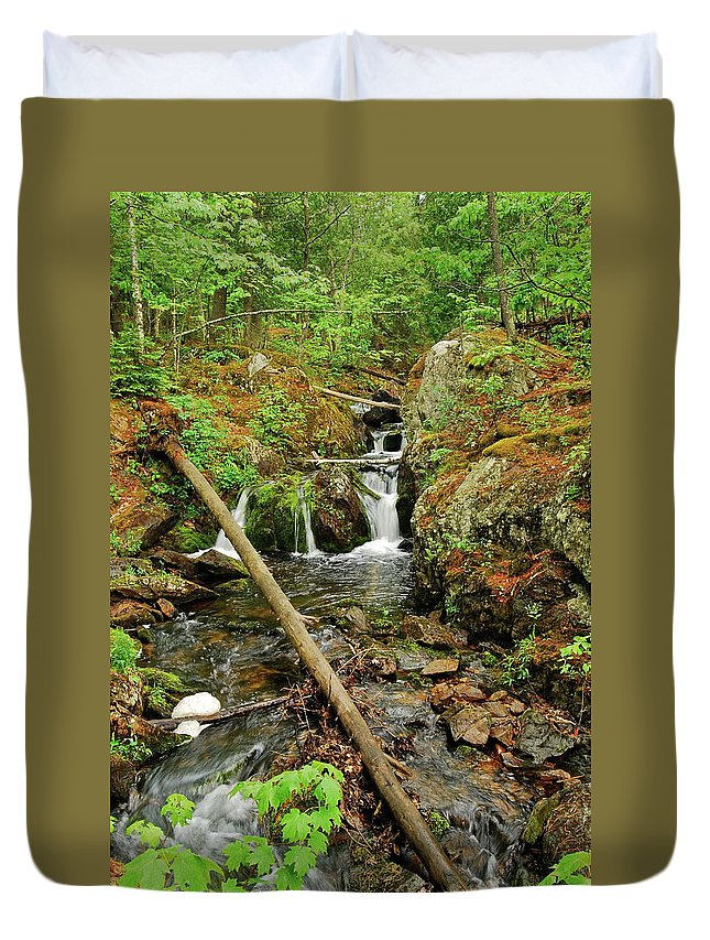 Reany Falls Duvet Cover featuring the photograph Reany Falls 2 by Michael Peychich