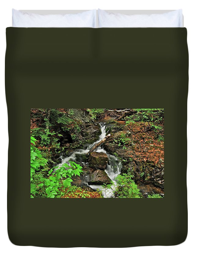 Reany Falls Duvet Cover featuring the photograph Reany Falls 5 by Michael Peychich