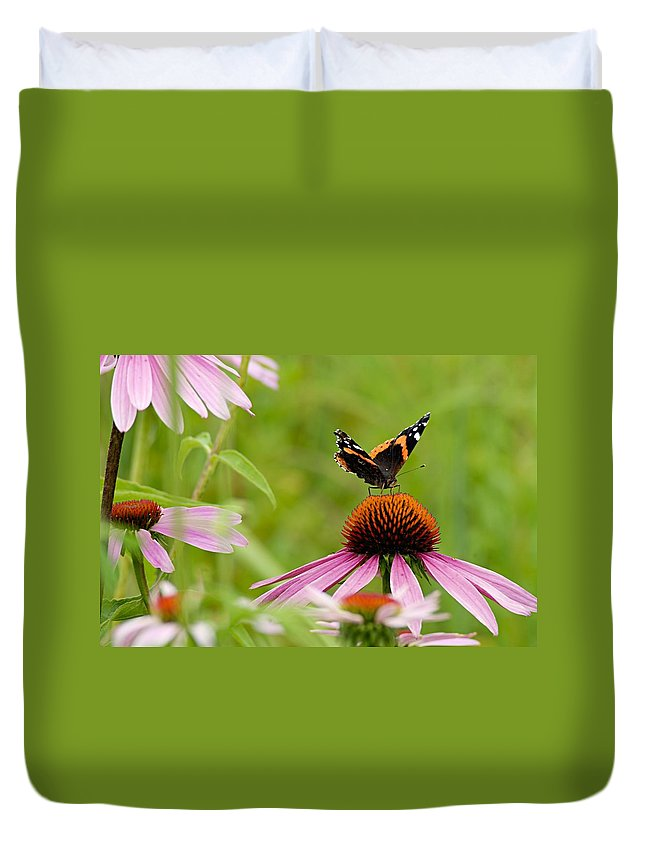Red Admiral Duvet Cover featuring the photograph Red Admiral On Cone Flower by Larry Ricker