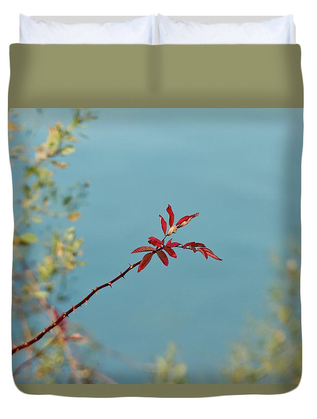 Red Duvet Cover featuring the photograph Red And Blue by MotionOne Studios