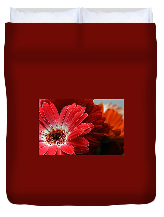 Clay Duvet Cover featuring the photograph Red And Orange Florals by Clayton Bruster