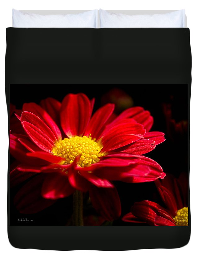 Flower Duvet Cover featuring the photograph Red And Yellow by Christopher Holmes