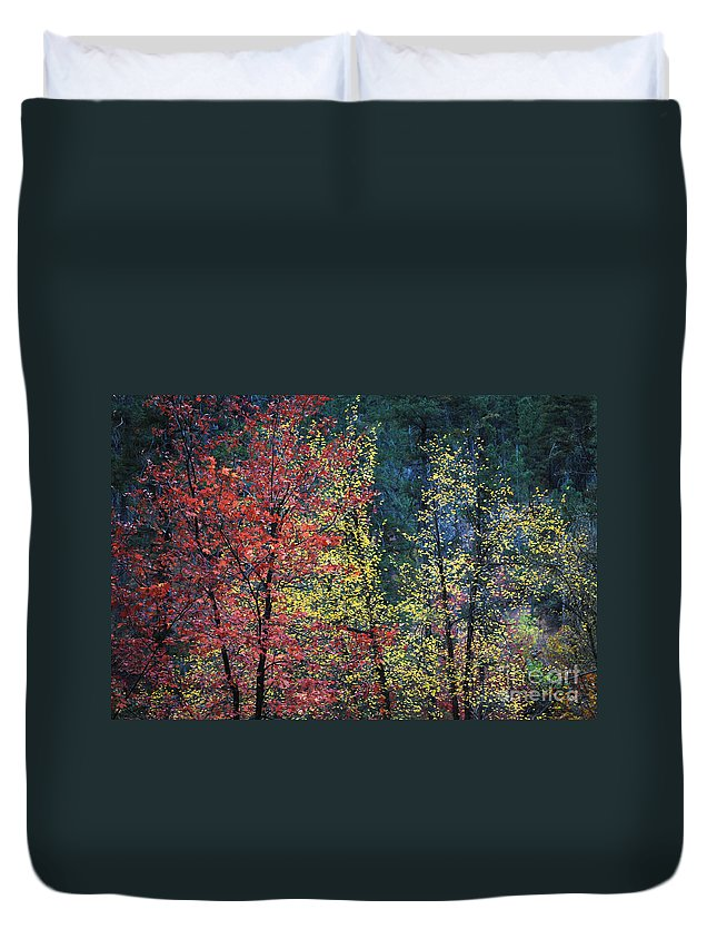 Landscape Duvet Cover featuring the photograph Red And Yellow Leaves Abstract Horizontal Number 1 by Heather Kirk